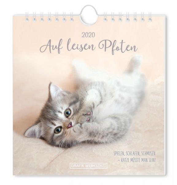 Postkartenkalender 2020 Auf leisen Pfoten