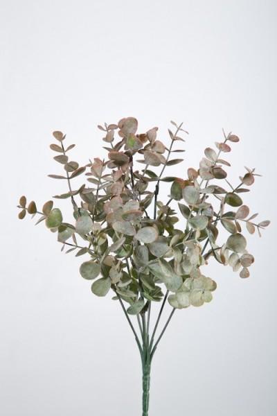 Eukalyptus Zweig Strauß 33 cm