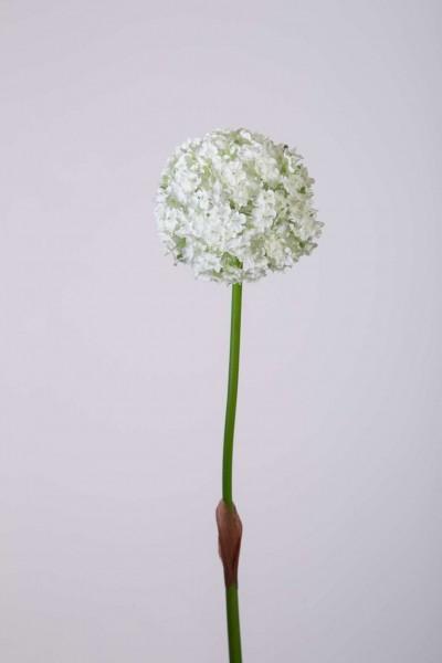 Single Allium Spray 82cm