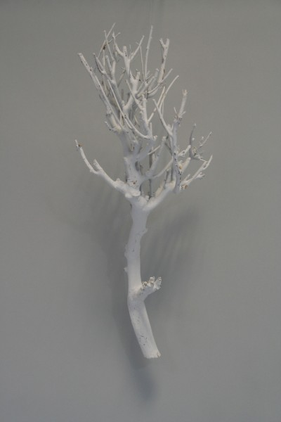 Geäst, grau, L:50-70cm