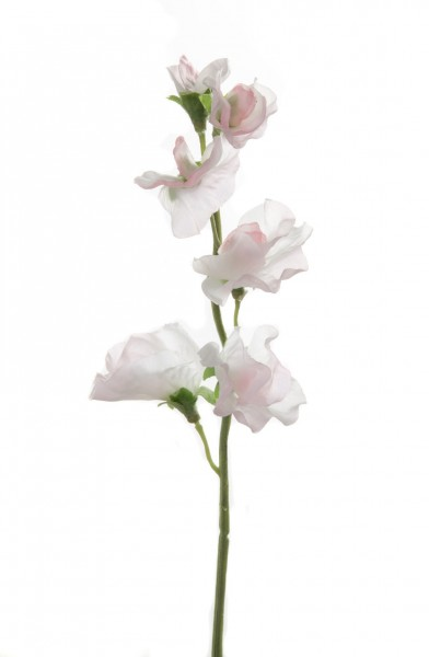 Sweetpea Single Stem Flocked 32cm