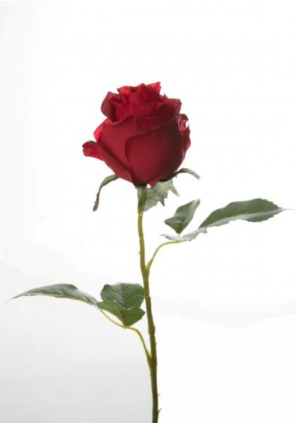 Rose, Stiel mit zwei Blättern, L:54cm, Stiel aus Kunststoff