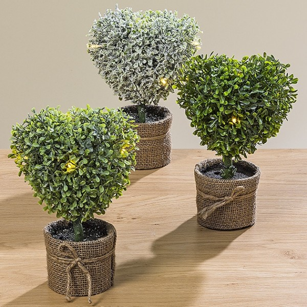 LED-Buchsbaum Herz im Topf