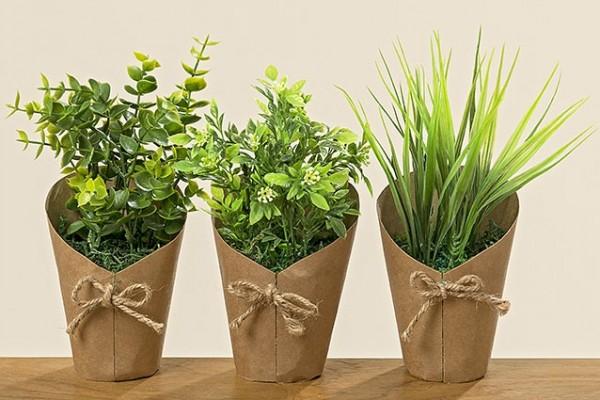 Pflanze im Topf TDSP 6/D 3s H22cm Kunststoff